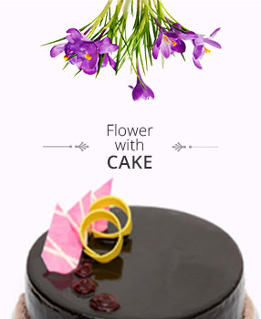 Send Flowers with Cake to India