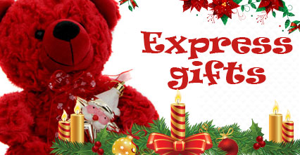 Express Christmas Gifts